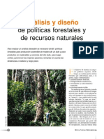 analis diseño politicas forestales
