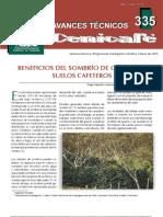 BENEFICIOS DEL SOMBRÍO DE GUAMO EN café.