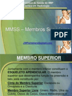 Aula 1 - Anatomia e Analise Radiografica Dos Mmss