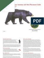 Bear Shot Placement