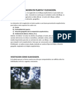 Vegetacion en Planta y Elevacion Para Entregar