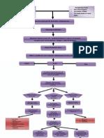 pathophysiologyRHD