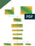 Pathophysiology Inguinal Hernia