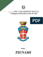 Scioglimento Consiglio Comunale Terme Vigliatore Parmaliana Procedimento Penale 1842 2004 Tsunami-Introduzione Luglio 2005