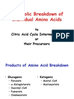 Amino Acids Metabolism