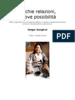 Dzigar Kongtrul Rinpoche - Vecchie Relazioni Nuove Possibilit