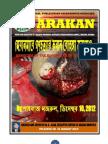 Rohingya Genocide in Bangla by Shahbaz Nazrul