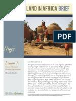 Niger_Regeneration_Oct2012.pdf