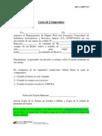 Carta Compromiso Web 2012