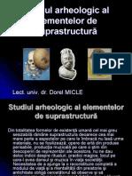 Studiul Arheologic Al Elementelor de Suprastructura