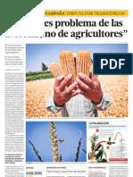 EL MAIZ PROBLEMA DE AGRICULTORES
