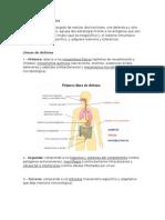 Biología - Sistema Inmunológico (Resúmen).doc