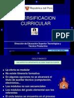 Diversificacion Curricular. Cetpro