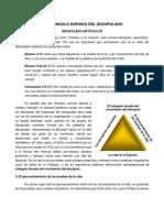 05-Discipulado-V2-El Triangulo Dorado Del Discipulado