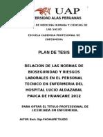 Plan de Tesis Delia