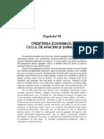 10.Cresterea Economica, Ciclul de Afaceri Si Somajul