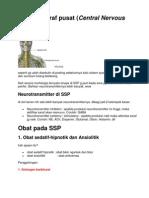 Sistem syaraf pusat.docx
