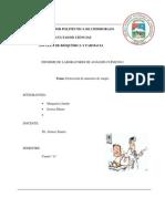 informe  clinicos.docxsangre