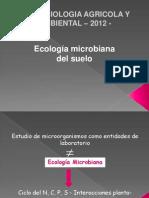 Ecología Microbiana Suelo Rizosfera