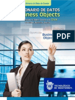 Bussiness Object Dictionary