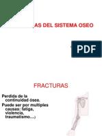 fisio. sistema musculo esqueletico