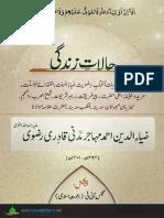 Halat-e-Zindagi Hazrat Ziauddin Ahmad Mahajir Madani Qadri Rizwi
