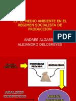 EL MEDIO AMBIENTE EN EL REGIMEN SOCIALISTA DE PRODUCCION