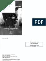 Wittgenstein y la identidad lógica