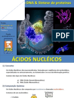 aula acidos nucleicos - high school biology