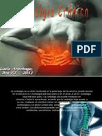 analisis - pp ind - lumbalgia crónica - arechaga 3ro fj
