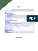 Proiect Managementul Calitatii - Berea