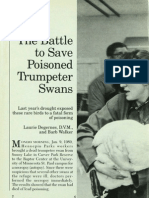 1489 Battle to Save Poisoned Trumpeter Swans The
