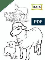 ANIMALE DOMESTICE DE COLORAT