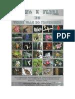 fauna and flora brazilian atlantic coastal forest