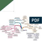 curriculum mindmap