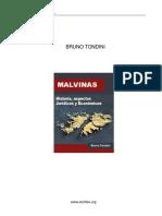 Tondini Bruno - Islas Malvinas Su Historia Aspectos Juridicos y Economicos