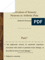 Activation of Sensory Neurons in Arthritic Pain