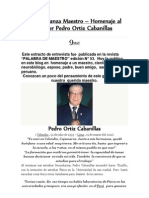 Entrevista a Pedro Ortiz Cabanillas