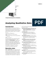 Analzing Qual Data