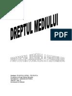 PDF Protectia Juridica a Padurilor Dreptul Mediului Www.e Referat.net