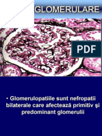 Glomerulonefrite as Si BFT Final 2012