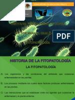 Antecednetes de fITOPATOLOGIA