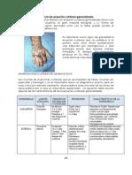 Comparación de las Enfermedades Exantématicas de la Infancia