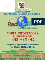 Newsletter nº2 Red Andina de Transferencia Tecnológica