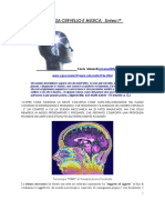 P.Manzelli_Scienza_cervello_musica
