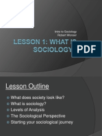 Lesson 1 - What is Sociology