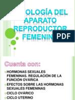 APARATO FEMENINO FISIOLOGIA