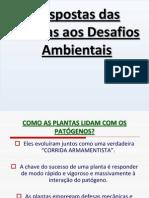 resposta das plantas aos desafios ambientais