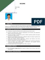 Resume Saranraj 2012