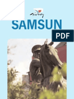 Samsun Travel Guide